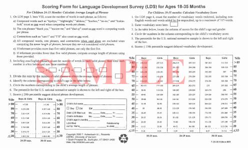 child behavior observation report
